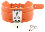 Оранжевый ошейник с замком